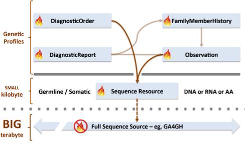 Clinical Genomics on FHIR - Innovative Healthcare   Akana